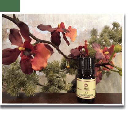chakra-essential-oil